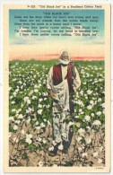 Old Black Joe In A Southern Cotton Field - Black Americana