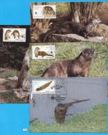 GERMANY 1987; Maximum Card, Complete Set; Mi: 3107 - 3110; WWF, Otter, Fischotter, Lutra Lutra - [6] République Démocratique