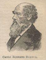 A0645 Carlo Roberto Darwin - Stampa Antica Del 1911 - Xilografia - Prints & Engravings