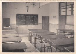 Menen, Meenen, Vrije St Lucas Vakschool, Klas Der Algemene Vakken (pk17644) - Menen