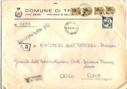 COMUNE DI TRICHIANA -  32028 - PROV BELLUNO - ANNO 1981 - R - FTO 18x24 - TEMA TOPIC COMUNI D´ITALIA - STORIA POSTALE - Affrancature Meccaniche Rosse (EMA)