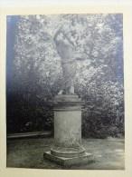 78 - VERSAILLES - RARE PHOTO ORIGINALE SUR CARTON EPAIS - MINERVE - BOSQUET DE LA REINE - Anciennes (Av. 1900)