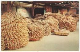 Tobacco Warehouse - Raleigh Cancel 1966 - Raleigh