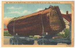 Giant Log En Route To Mill - Non Classés