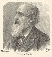 A6723 Darwin Carlo - Stampa Antica Del 1925 - Xilografia - Prints & Engravings