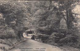 Schaarbeek, Schaerbeek, Vallée Josaphat, Chemin Près De La Fontaine D´Amour (pk17767) - Schaerbeek - Schaarbeek