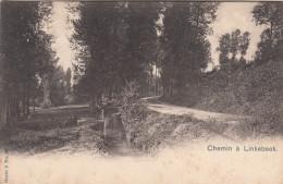 Chemin De Linkebeek (pk17775) - Linkebeek