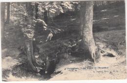 Oudergem, Auderghem, La Source De L'empereur (pk17777) - Oudergem - Auderghem