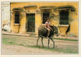 COLOMBIA  MOMPOS:  RAGAZZO  SULL' ASINO       (NUOVA CON DESCRIZIONE DEL SITO SUL RETRO) - Colombia