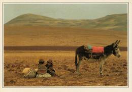 PERU�  AREQUIBA:  ELEVATO ALTOPIANO  ANDINO      (NUOVA CON DESCRIZIONE DEL SITO SUL RETRO)