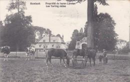 Humbeek - Propiété Du Baron Lunden - Les Yarling Màles - Grimbergen