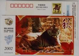 Siberian Tiger,#6,China 2002 Heilongjiang Rare Animal Advertising Pre-stamped Card - Félins