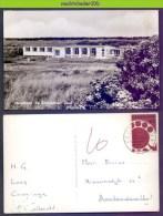 Ncg009 JEUGDHOTEL DE ZILVERMEEUW TEXEL WADDENEILAND 1962 NEDERLAND POSTCARD - Hotel's & Restaurants