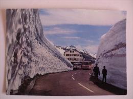 Postcard Postal Switzerland Grimsel-Pashöhe 2165 M Bus - VS Valais