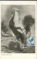 Coq D'Alger - Cartes-Maximum