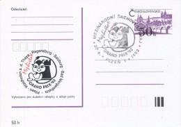 J0881 - Czechoslovakia / Postal Stationery (1992) Plzen 1: Internat. Chess Tournament Mephisto GRAND PRIX '92 (black/red - Scacchi