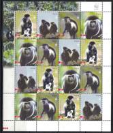 Angola. Monkey. WWF. 2004. MNH FOLDED Sheet Of 16. SCV = 24.00 - Affen