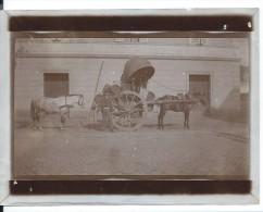 Roma Sur La Route De Nemi  Février 1908  Paysan Attelage Cheval  Tonneaux Photo 12x9 - Persone Anonimi