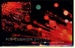 Telefonkarte  Telekom Phonecard  -  Pin-Cushion Protea  -  The Smart Way To Make A Phone Call - Telefonkarten
