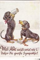 HUNDE - DACKEL / Teckel / Dachshund / Bassotto, Bier, Humor - Hunde