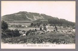REMIREMONT . Fort Du Parmont . - Remiremont