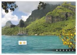 Polynésie Française /  Moorea - Baie De Cook - 135 - Tahiti