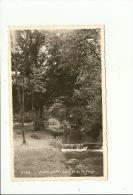 Weillen Cascade De La Forge Mosa No 5133 - Onhaye
