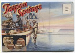 Tarpon Springs - Pèche Aux éponges, Scaphandriers...Dépliant De 10 Cartes Illustrées Recto-verso - Otros