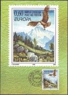 YUGOSLAVIA - JUGOSLAVIA - MAXI CARD - EUROPA - BIRDS - EAGLE - 1995 - Cartoline Maximum
