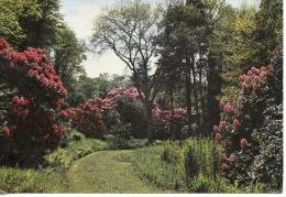 Varengeville Sur Mer : Le Parc Du Bois Des Moutiers N°01 Rhodo  (archi Edwin Lutyens Pays Gertrude Jekyll) - Varengeville Sur Mer
