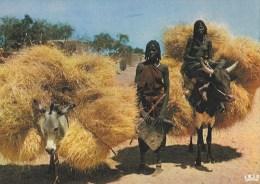 CPM R�publique du Tchad retour des champs - femme seins nus sur vache