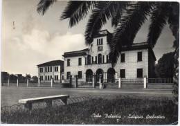Calabria-vibo Valentia-vibo Valentia Veduta Scuola Edificio Scolastico - Vibo Valentia