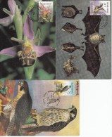 België, Maximumkaarten, Nr 2244/2246 (6295) - Orchideeën