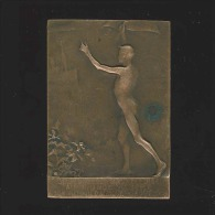 Médaille - La Jeunesse Bruxelloise Au Prince Albert - Retour D'Afrique Août 1909 - Royaux / De Noblesse