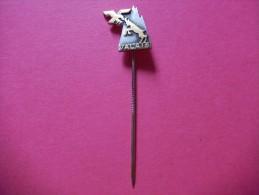 Spilla Valais -P119 - Pin's