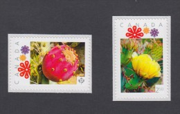 "LQ. CACTUS FRUIT & FLOWER Set Of 2 MNH Canada 2011 Picture Postage Stamps, ""P"" & ´International"" (p11cs2) - Cactusses"