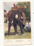 Xxx  THAILANDE SIAM H M The Queen's Elephant Circulé Timbre Enlevé ,mailed Stamp Missing - Thailand