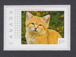 """LQ. SAND CAT  Picture Postage MNH Stamp, """"USA"""" - Rate. Canada  2014 [p11sn16] - Domestic Cats"""