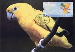 BRASIL / BRAZIL (2000) - Carte Maximum Card - ATM - ARARAJUBA / Guaruba Guarouba / Golden Parakeet / Cotorra, Bird - Brazil
