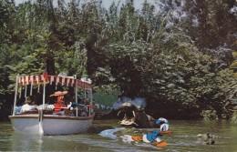 C P A-C P S M---THEME---DISNEY---jungle River Cruise---voir 2 Scans - Disneyland