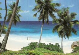*SEYCHELLES* Cartolina NUOVA - Seychelles
