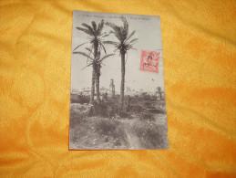 CARTE POSTALE ANCIENNE CIRCULEE DE 1914. / CASABLANCA.- GROUPE DE PALMIERS / CACHETS + TIMBRE SURCHARGE - Casablanca