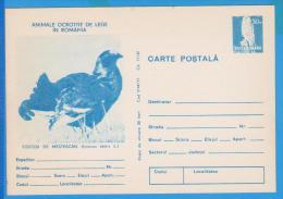 BIRDS, BIRD, OISEAUX, BLACKCOCK LYRURUS TETRIX, FALCO TINNUNCULUS  POSTAL STATIONERY ROMANIA - Cuckoos & Turacos
