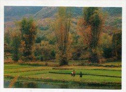 VIETNAM - AK 229718 Ha Giang Scenery - Viêt-Nam