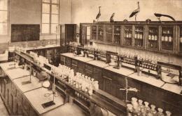BELGIQUE - FLANDRE ORIENTALE - GAND - OOSTACKER - OOSTAKKER - Enseignement -Laboratoire - Laboratorium. - Gent