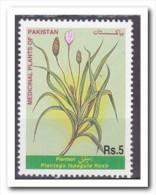 Pakistan 1999, Postfris MNH, Medical Plants - Pakistan