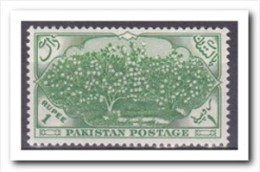 Pakistan 1954, Postfris MNH, Cotton Plantation - Pakistan