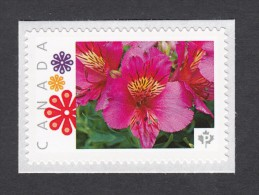 """LILY, PERUVIAN LILY ALSTROEMERIA Personalized Picture Postage  Unused Stamp, """"P""""- Rate.Canada 2014 [p83fl5]"""