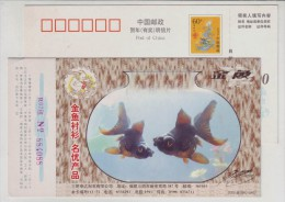 Golden Fish,China 2000 Famous Brand Jinyu Shirt Advertising Pre-stamped Card - Poissons