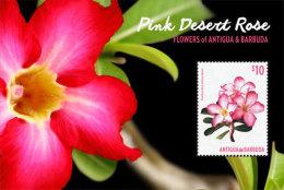 Antigua Barbuda-2015-Plant-Flowers Of Antigua Pink Desert Rose - Ohne Zuordnung